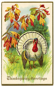 thanksgiving+turkey+vintage+image+graphicsfairy005