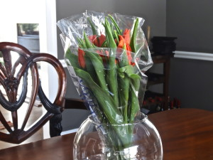 Tulips are great long lasting cut flowers