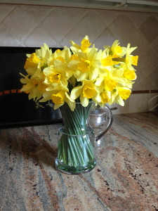 Daffodils make long lasting cut flowers