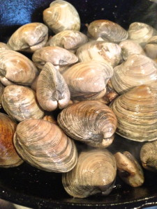Clams in Cod with White Wine