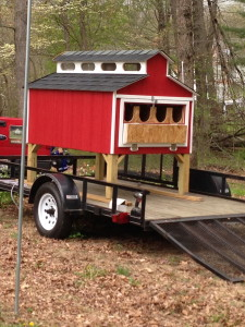 My Latest Project - the COOP
