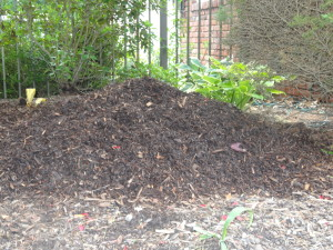June Garden Maintenance - mulch