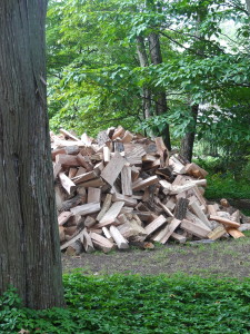 Signs of the Season : Woodpiles all over the northeast