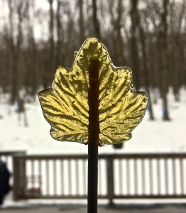 Maple Syrup Lollipops