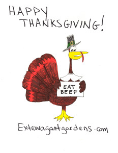 Happy Thanksgiving from Extravagant Gardens